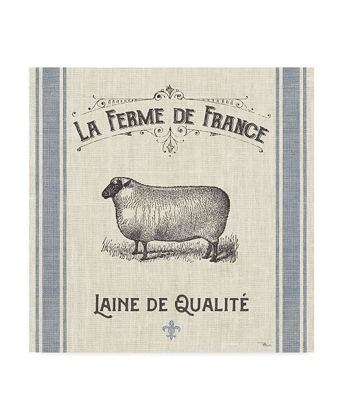 "Trademark Global Pela Studio French Farmhouse V Canvas Art - 20"" x 25"""