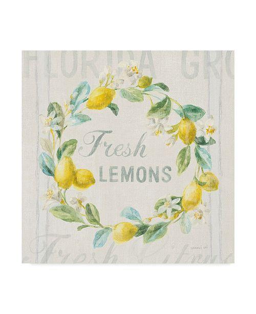 "Trademark Global Danhui Nai Floursack Lemon V Canvas Art - 20"" x 25"""