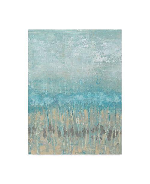 "Trademark Global Jennifer Goldberger Coastline Abstraction I Canvas Art - 20"" x 25"""