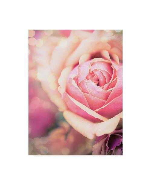 "Trademark Global Sonja Quintero Rosie Pink I Canvas Art - 20"" x 25"""
