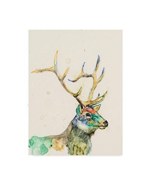 "Trademark Global Jennifer Goldberger Hi Fi Wildlife III Canvas Art - 20"" x 25"""