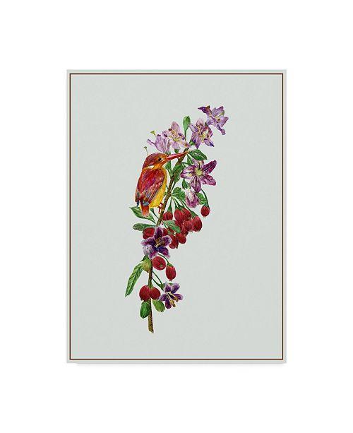 "Trademark Global Melissa Wang Lycium Barbarum II Canvas Art - 20"" x 25"""