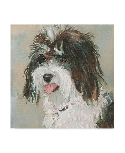 "Trademark Global Edie Fagan Neely Schnoodle Canvas Art - 20"" x 25"""