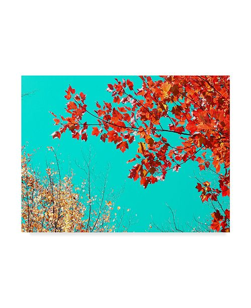 "Trademark Global Judy Stalus Autumn Tapestry I Canvas Art - 15"" x 20"""