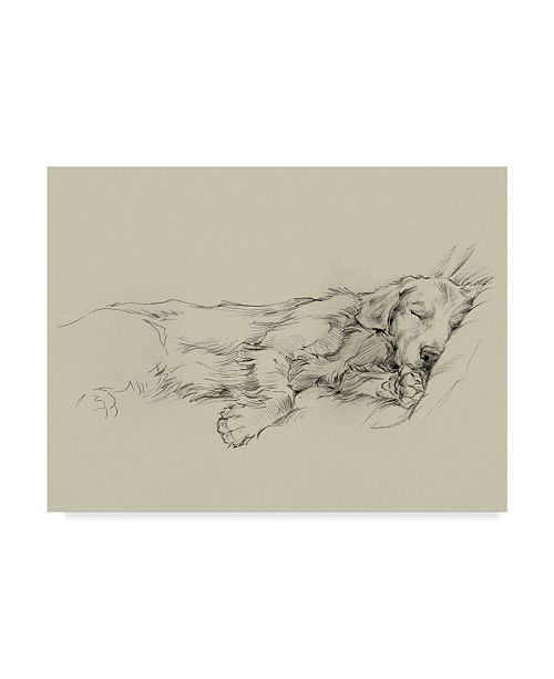 "Trademark Global Ethan Harper Dog Days III Canvas Art - 20"" x 25"""