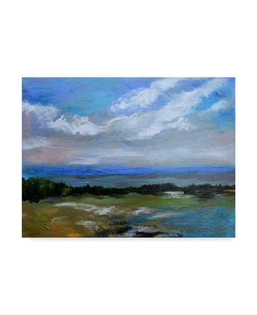 """Trademark Global Karen Fields Beach and Sky I Canvas Art - 15"""" x 20"""""""