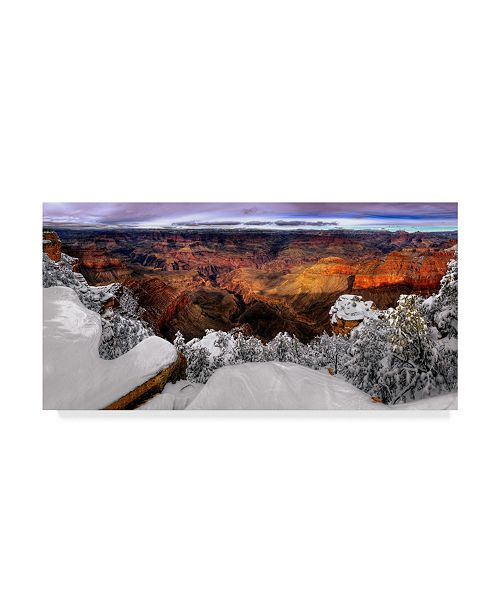 "Trademark Global David Drost Snowy Grand Canyon VII Canvas Art - 15"" x 20"""