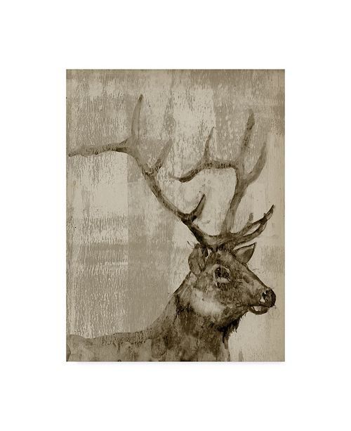 "Trademark Global Jennifer Goldberger Sepia Elk Canvas Art - 37"" x 49"""