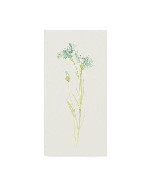 "Trademark Global June Erica Vess Cornflower Study I Canvas Art - 37"" x 49"""