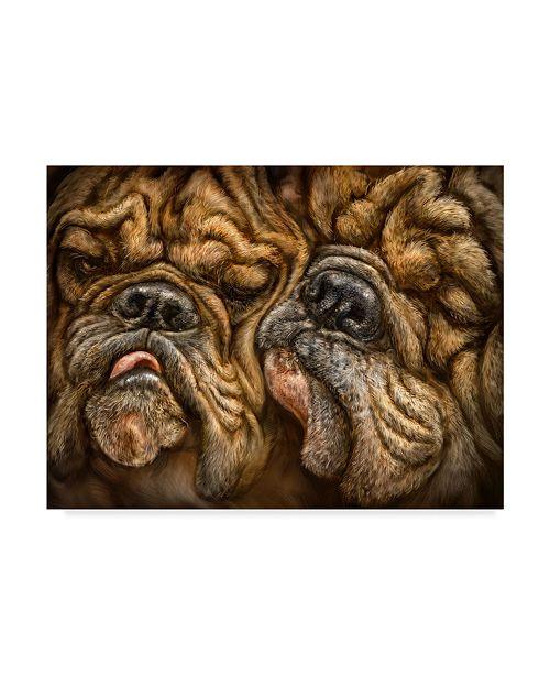 "Trademark Global Patrick Lamontagne Wrinkles Illustration Canvas Art - 37"" x 49"""