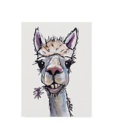 """Hippie Hound Studios Alpaca Diesel Canvas Art - 15"""" x 20"""""""