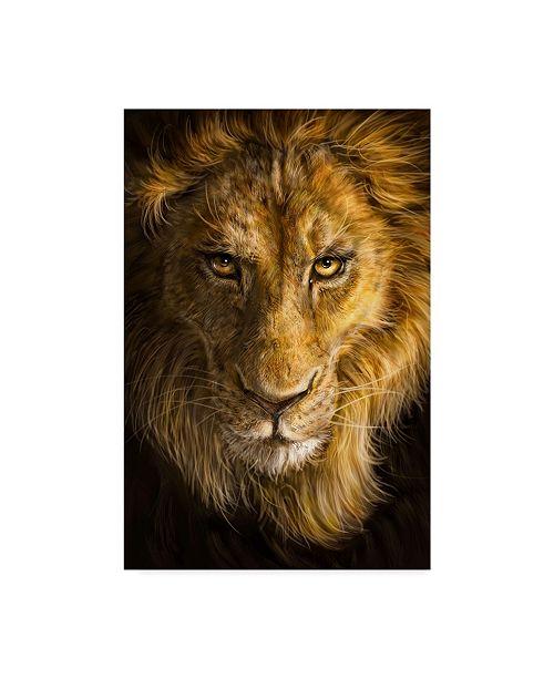 "Trademark Global Patrick Lamontagne Lion Illustration Canvas Art - 20"" x 25"""