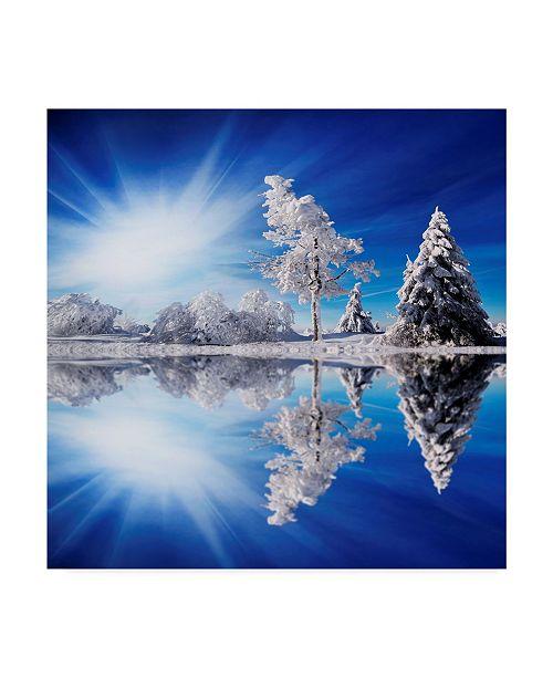 "Trademark Global Philippe Sainte-Laudy Cold Light Winter Canvas Art - 15"" x 20"""