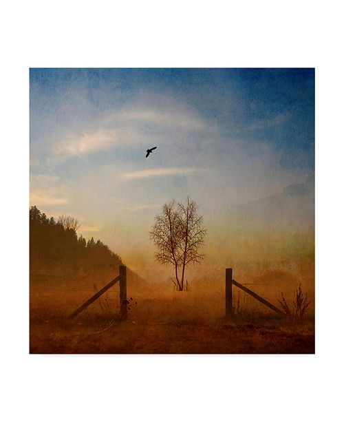 "Trademark Global Philippe Sainte-Laudy Open Space Canvas Art - 27"" x 33"""