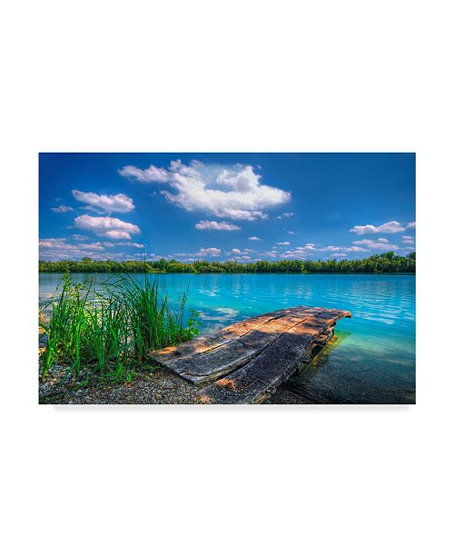 "Trademark Global Philippe Sainte-Laudy Sunny Day Coastline Canvas Art - 37"" x 49"""