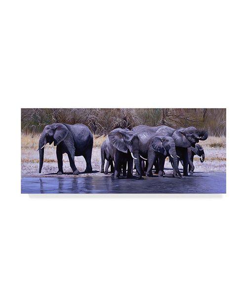 "Trademark Global Pip Mcgarry Elephants Drinking Canvas Art - 20"" x 25"""