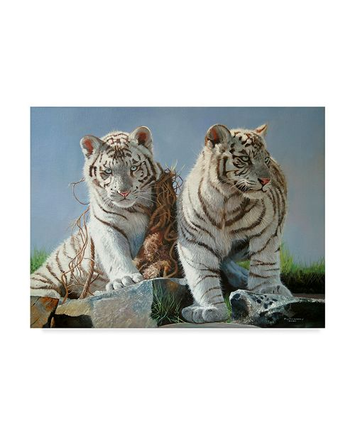 "Trademark Global Pip Mcgarry White Tiger Cubs Playing Canvas Art - 20"" x 25"""