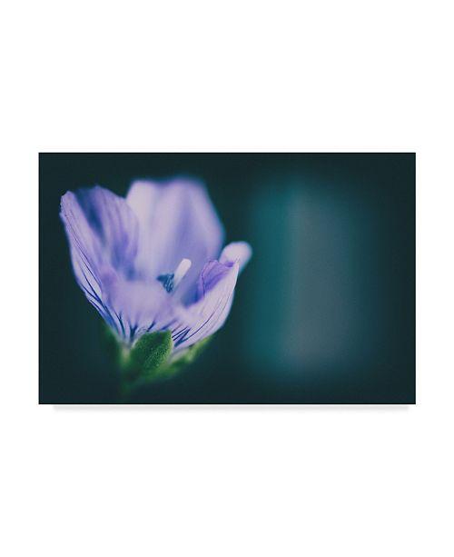 "Trademark Global Pixie Pics Macro Purple Flower Canvas Art - 20"" x 25"""