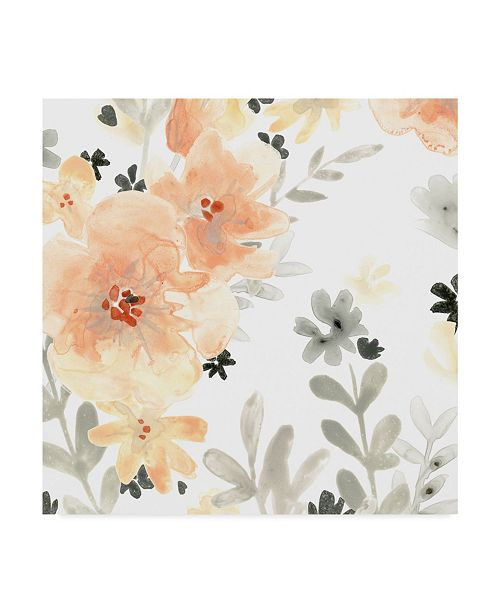 "Trademark Global June Erica Vess Blush Garden I Canvas Art - 20"" x 25"""