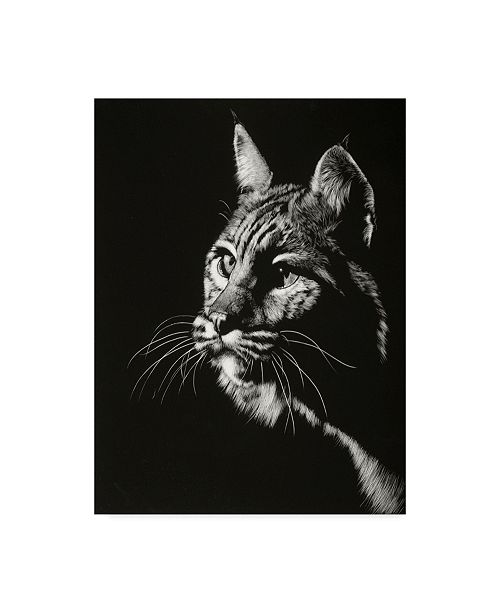 "Trademark Global Julie T. Chapman Black Glimpse II Canvas Art - 20"" x 25"""