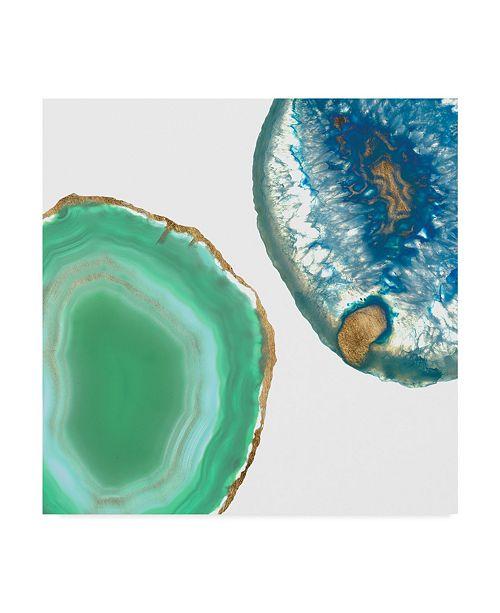 "Trademark Global Jennifer Goldberger Gem Stones IV Canvas Art - 27"" x 33"""