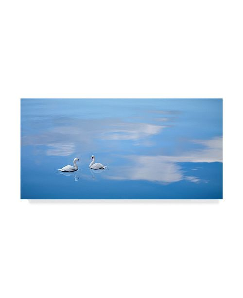 "Trademark Global James Mcloughlin Dusk & Water VI Canvas Art - 37"" x 49"""