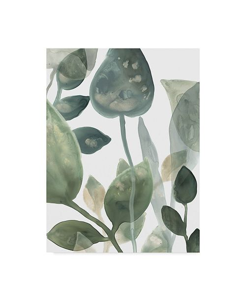 "Trademark Global June Erica Vess Water Leaves I Canvas Art - 37"" x 49"""