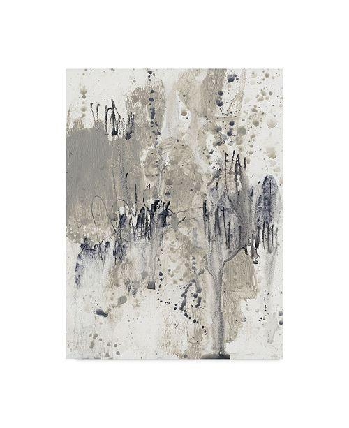 "Trademark Global Jennifer Goldberger Paynes Splash II Canvas Art - 37"" x 49"""