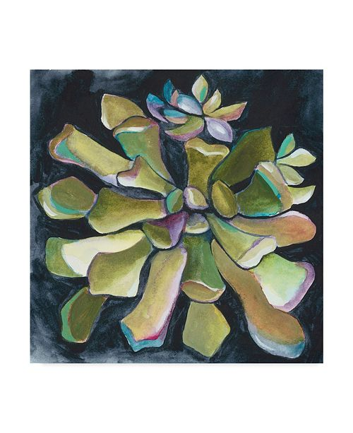 "Trademark Global Chariklia Zarris Succulent Rosette I Canvas Art - 27"" x 33"""