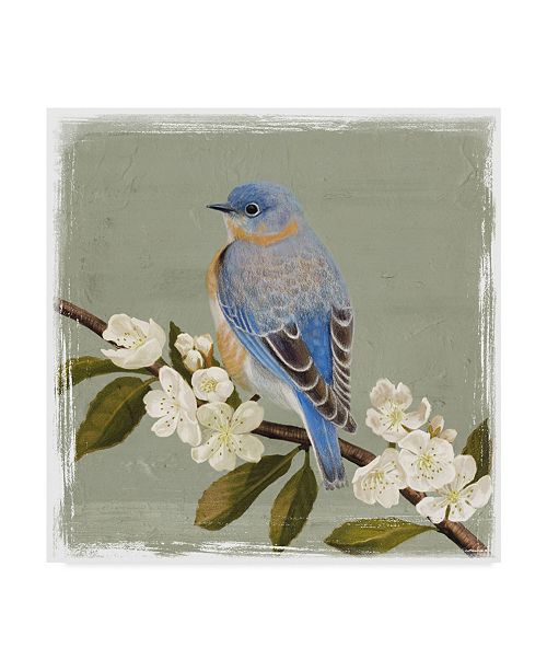 "Trademark Global Victoria Borges Bluebird Branch II Canvas Art - 15"" x 20"""