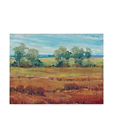 "Tim Otoole Red Clay I Canvas Art - 37"" x 49"""