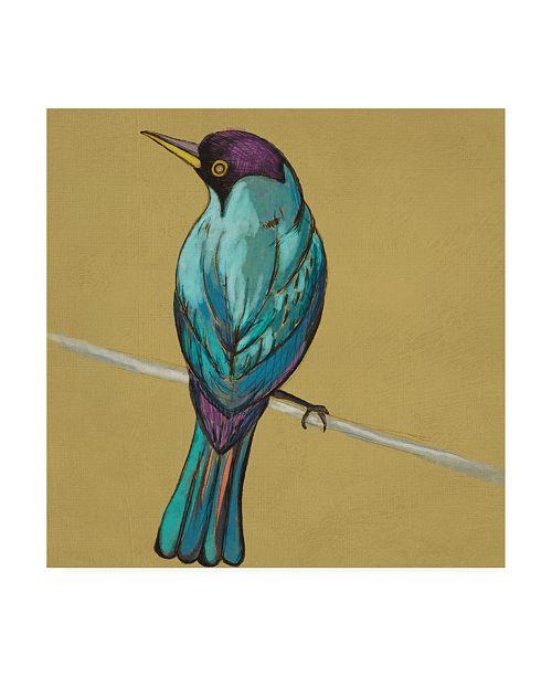 "Trademark Global Chariklia Zarris Winged Sketch I on Ochre Canvas Art - 27"" x 33"""