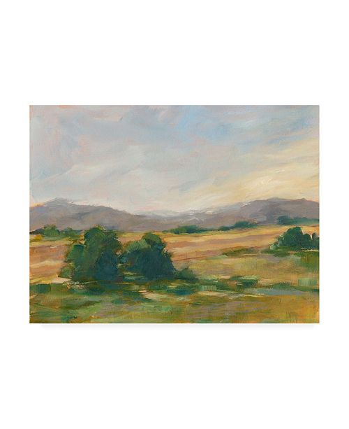 "Trademark Global Ethan Harper Green Valley II Canvas Art - 20"" x 25"""