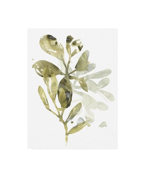"Trademark Global June Erica Vess Lichen and Leaves I Canvas Art - 20"" x 25"""