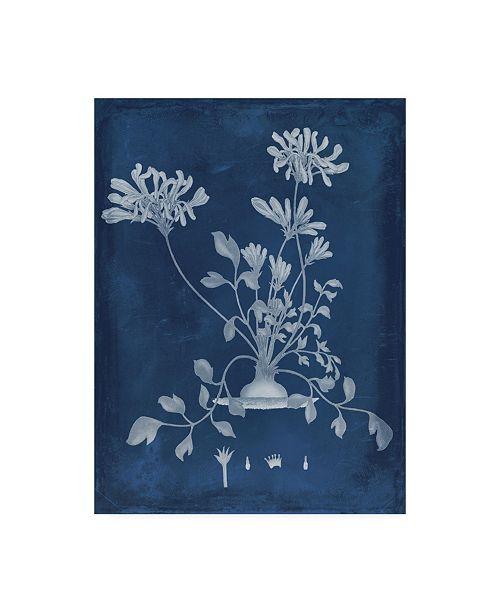 "Trademark Global Vision Studio Botanical in Indigo II Canvas Art - 20"" x 25"""
