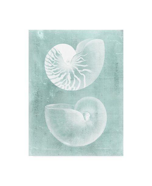 "Trademark Global Vision Studio Nautilus on Spa I Canvas Art - 20"" x 25"""