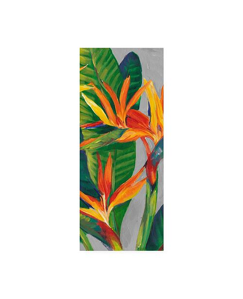"Trademark Global Tim Otoole Bird of Paradise Triptych II Canvas Art - 15"" x 20"""