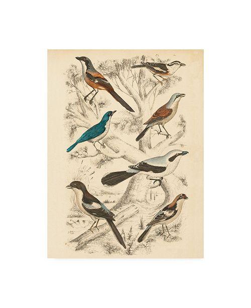 "Trademark Global Milne Avian Habitat V Canvas Art - 20"" x 25"""