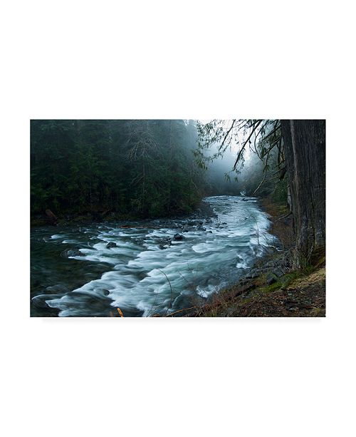 "Trademark Global PhotoINC Studio River in the Forest Canvas Art - 19.5"" x 26"""