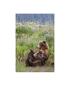 """Renee Doyle In a Mothers Arms Canvas Art - 36.5"""" x 48"""""""