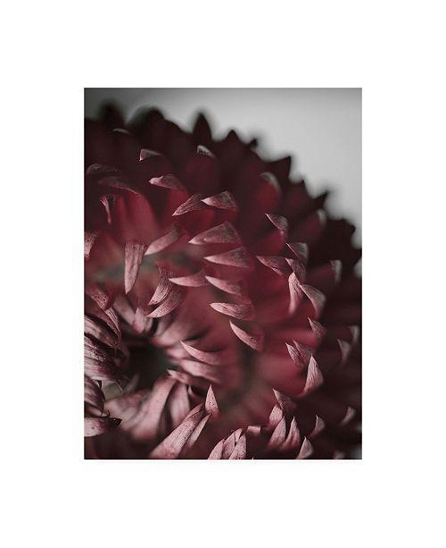 """Trademark Global Design Fabrikken Dahlia Fabrikken Canvas Art - 15.5"""" x 21"""""""