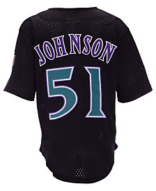 Mitchell & Ness Big Boys Randy Johnson Arizona Diamondbacks Mesh V-Neck Player Jersey