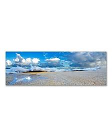 "- Stealth Foam Canvas Art, 12"" x 36"""