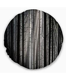 "Designart Sunbeams Peeking Through Dark Forest Forest Throw Pillow - 16"" Round"