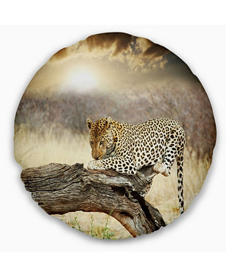 Design Art Designart Leopard Relaxing On Tree African Throw Pillow 16 Round Reviews Decorative Throw Pillows Bed Bath Macy S