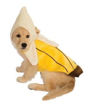 Banana Pet Costume