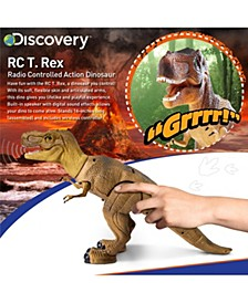 Toy RC Dinosaur - Dinosaur Toy