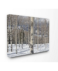 Winter Birches Photography Art Collection