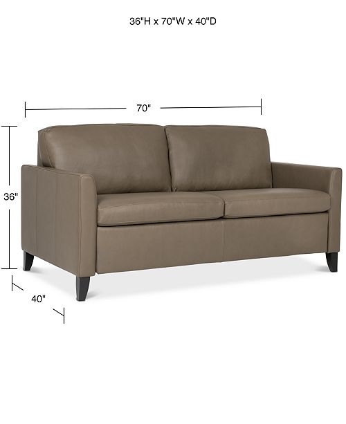 Priley 70 Leather Queen Sleeper Sofa