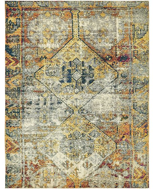 Bridgeport Home Newhedge Nhg1 Beige Area Rug Collection